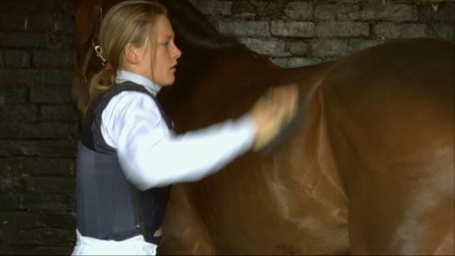 cu zo zi female jockey brushing horse in stable / newbury, england, uk - see other clips from this shoot 1045 stock videos and b-roll footage