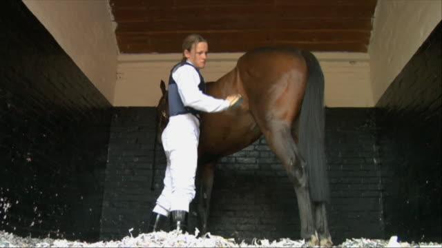 la ws female jockey brushing horse in stable / newbury, england, uk - newbury england stock videos & royalty-free footage