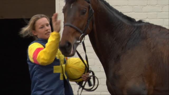 ms female jockey petting horse outside stable / newbury, england, uk - newbury england stock videos & royalty-free footage