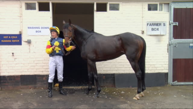 sm ws female jockey standing with horse outside stable, then trainer washes horse with squeegee / newbury, england, uk - newbury inghilterra video stock e b–roll