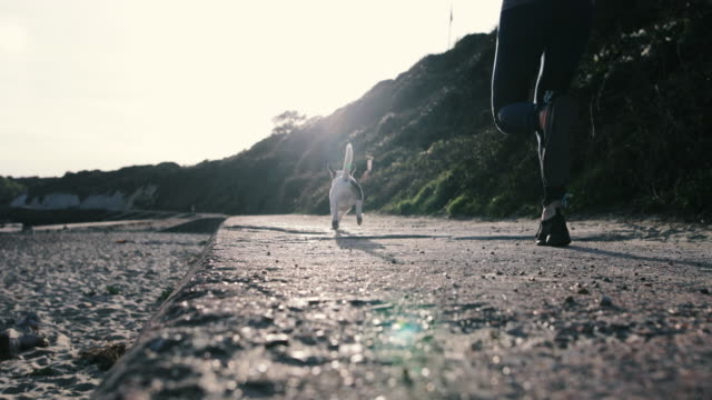 Female jogging by the beach with dog