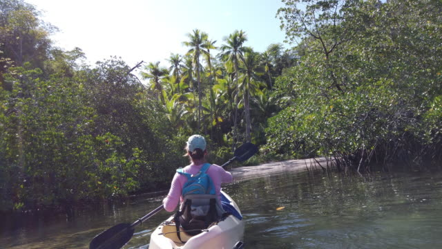 female kayaker in indonesia paddling through a small river - boat point of view stock videos & royalty-free footage