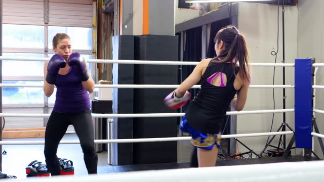 ms ts female kickboxers training together in ring in gym - 女子ボクシング点の映像素材/bロール
