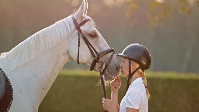 vídeos de stock, filmes e b-roll de slo mo mulher beijando cavalo no nariz no manhã meadow - acariciando