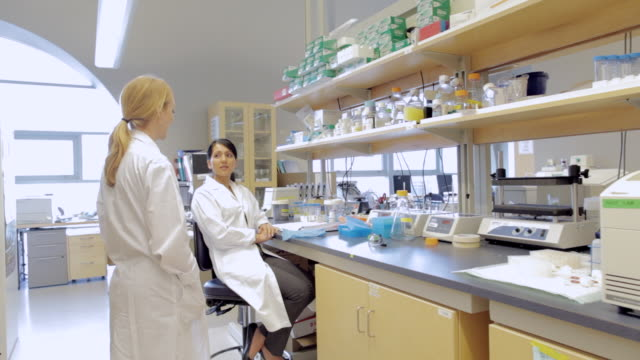 ms pov female lab technicians discussing in cancer research healthcare medicine industry dna sequencing laboratory / vancouver, bc, canada    - 白衣点の映像素材/bロール