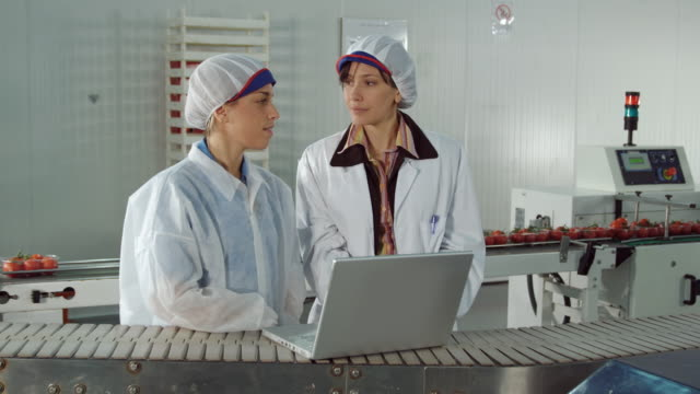 vidéos et rushes de ms ds female manager and female worker in protective clothing conferring at laptop computer in food processing plant / algarrobo, malaga, spain - charlotte médicale ou sanitaire