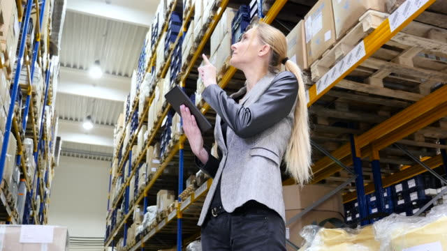 female manager counting stocks in warehouse - manager stock videos and b-roll footage