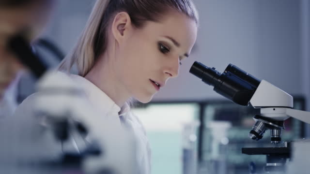 female microbiologist during research. using microscope in futuristic lab. research partner in background - biologist stock videos & royalty-free footage