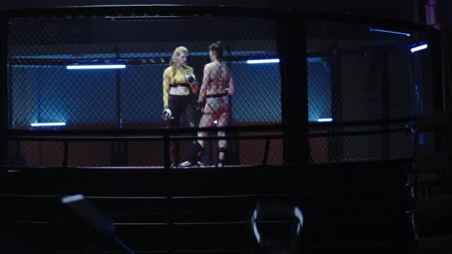 vídeos de stock, filmes e b-roll de lutadoras de mma. contato visual antes do primeiro soco - encarando