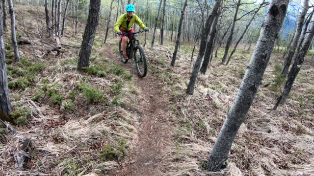 female mountain biker follows faint trail upwards through aspen grove - mountain biking stock videos & royalty-free footage