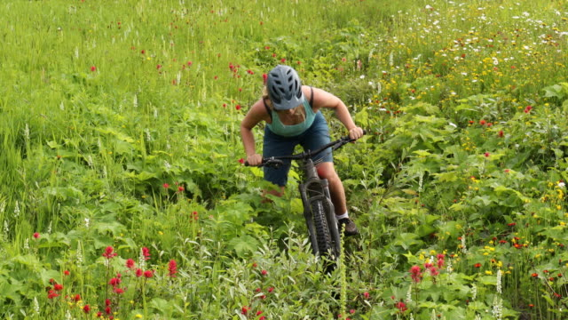 female mountain biker pedals up trail though mountain meadow - on the move stock videos & royalty-free footage