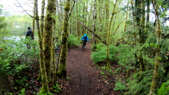 female mountain biker rides along forested path - jacket stock videos & royalty-free footage