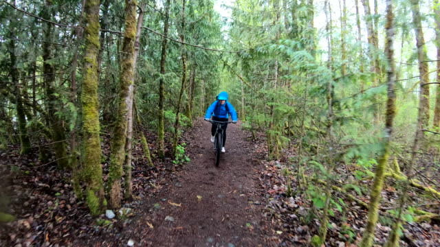 female mountain biker rides along forested path - outdoor pursuit stock videos & royalty-free footage
