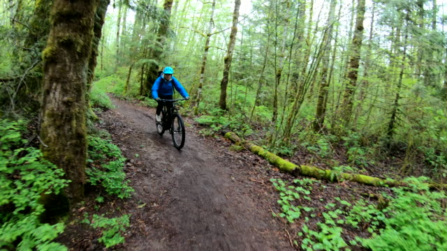 female mountain biker rides along forested path - one mature woman only stock videos & royalty-free footage