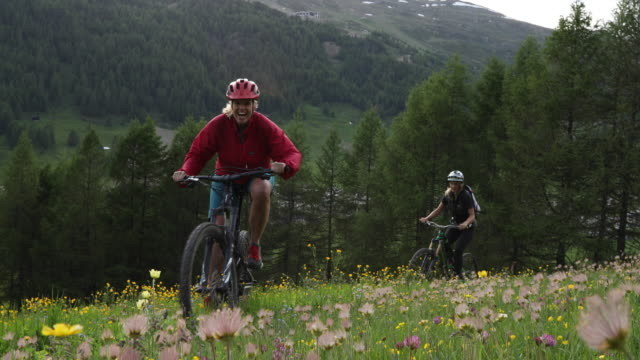female mountain bikers ascend alpine meadow - shorts stock videos & royalty-free footage