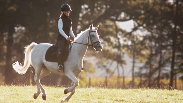 SLO MO vrouw te paard rijden in de ochtend weide