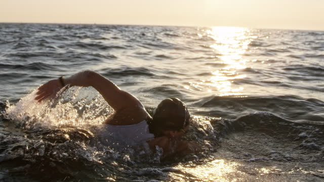 vídeos de stock e filmes b-roll de slo mo ts female open water swimmer swimming forward crawl in the sun - membro humano