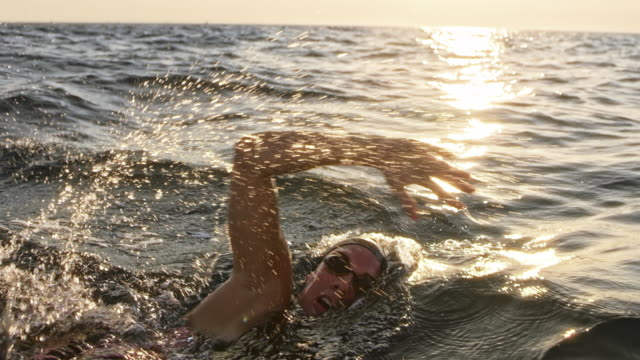 vídeos de stock e filmes b-roll de slo mo ts female open water swimmer swimming front crawl in the sea in sunshine - membro humano