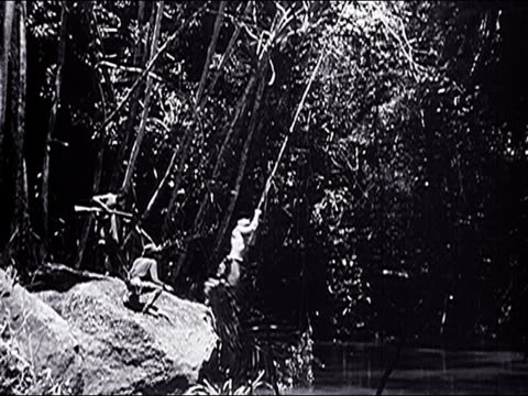 stockvideo's en b-roll-footage met 1947 female photographer visits the serengeti plain and views its wildlife - 1947