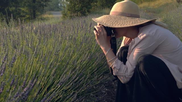 咲くラベンダーを持つ女性写真家 - カメラマン点の映像素材/bロール