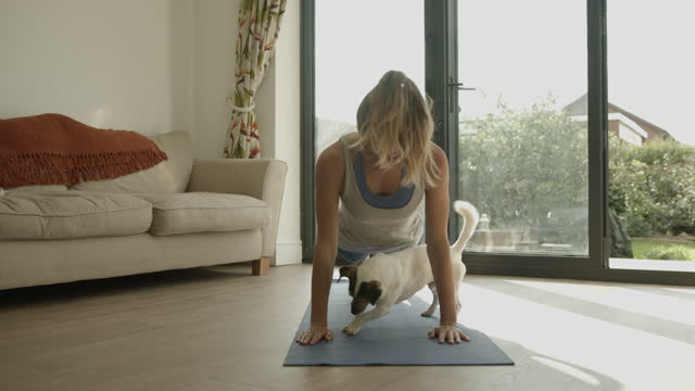 female practicing yoga exercise at home together with dog on floor during lockdown - mammal stock videos & royalty-free footage