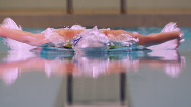 A swimmer dives into a pool and begins swimming using the butterfly stroke technique.