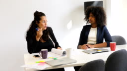 Female professionals planning strategy at desk