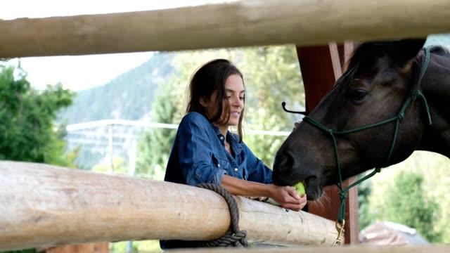 weibliche rancher füttert ihr pferd mit einem apfel - füttern stock-videos und b-roll-filmmaterial