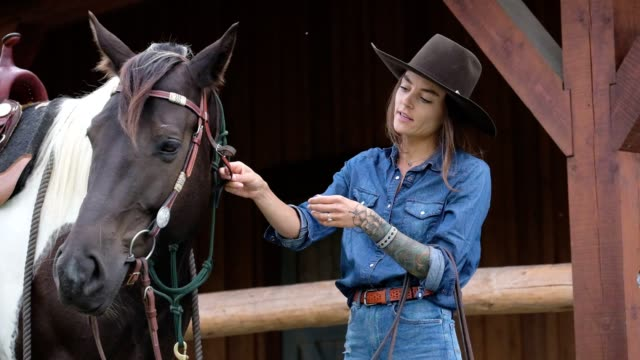 female rancher gets her horse ready to go riding. - feeding stock videos & royalty-free footage