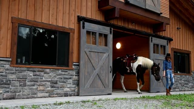 彼女の馬と一緒に働く女性の牧場主 - 農家の納屋点の映像素材/bロール
