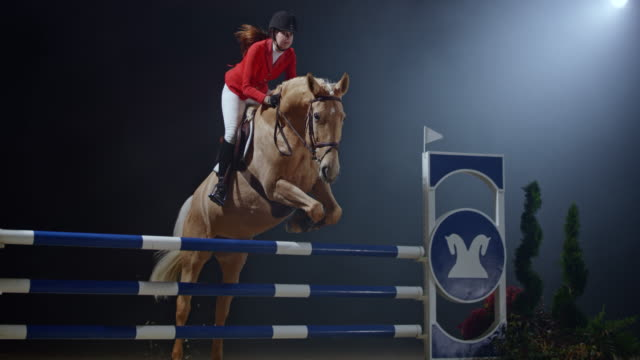 slo mo female rider and her horse jumping a rail obstacle at night - 乗る点の映像素材/bロール