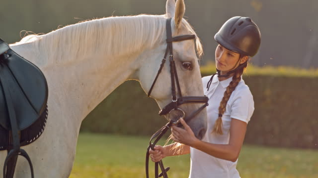 slo mo female rider bonding with her horse - stroking stock videos & royalty-free footage