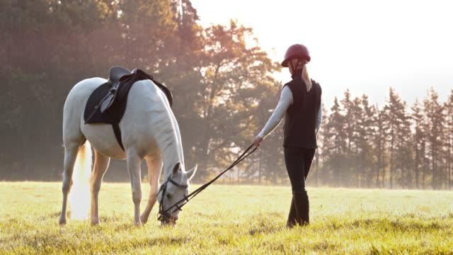 vídeos de stock, filmes e b-roll de slo mo cavaleiro fêmea que prende o cavalo de pastagem pela corda - montar um animal