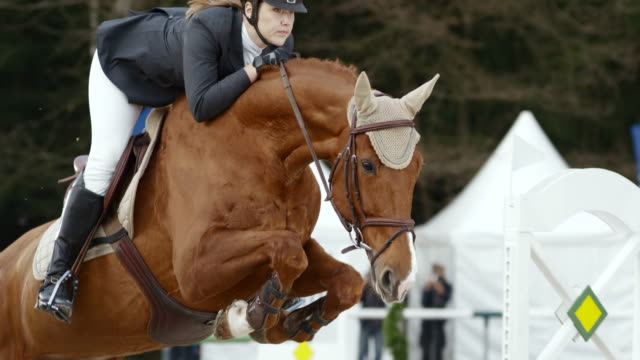 SLO MO DS Female rider jumping an obstacle on a chestnut horse