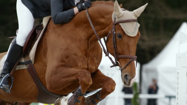 SLO MO DS Female rider jumping an obstacle with her horse