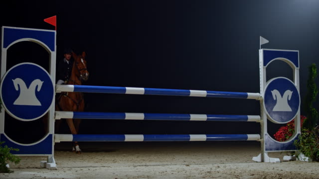 slo mo female rider on her chestnut horse jumping a rail at night - jockey stock videos and b-roll footage
