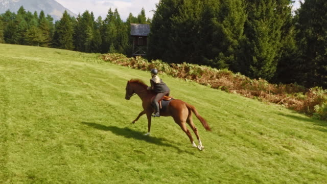 aerial female riding a galloping horse across meadow - two animals stock videos & royalty-free footage