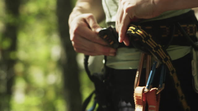 vídeos de stock e filmes b-roll de cu r/f td female rock climber putting on harness with carabineers, standing in forest, squamish, british columbia, canada - equipamento de alpinismo