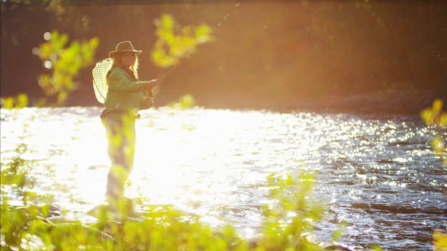 female rod and reel casting in river canada - freshwater fish stock videos & royalty-free footage