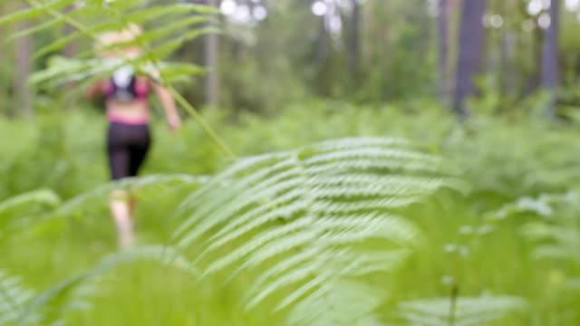 LD Female runner passing a fern in the forest