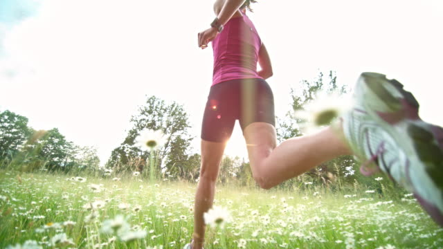 slo mo ts female runner running in summer meadow - cardiovascular exercise stock videos & royalty-free footage
