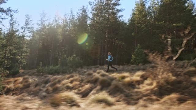 ts female runner running on a trail along a forest in sunshine - tracking shot stock videos & royalty-free footage