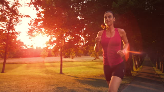 slo mo ts female running through tree avenue at sunset - cardiovascular exercise stock videos & royalty-free footage