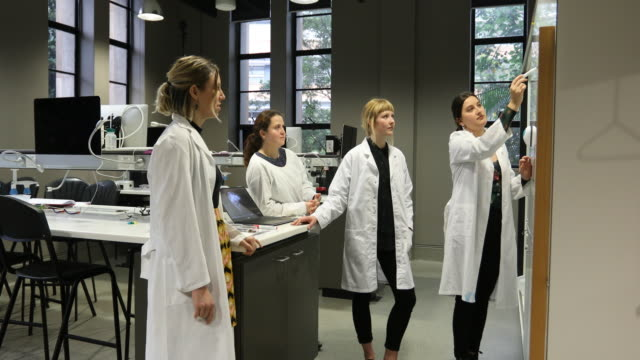 female science researchers discussing work - stem topic stock videos & royalty-free footage
