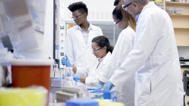 female scientific researcher demonstrates to colleagues pipetting technique - liquid solution stock videos and b-roll footage