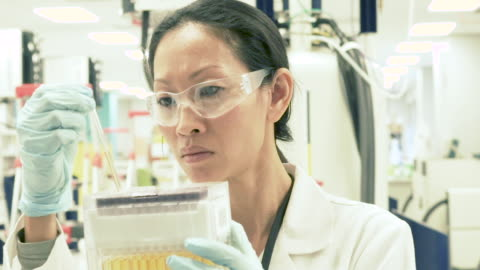 female scientist in bio-medical laboratory examining test tubes - wissenschaft stock-videos und b-roll-filmmaterial