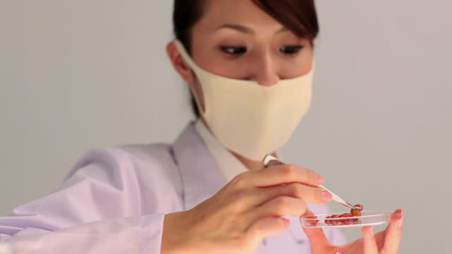 ms female scientist inspecting medicine / shibuya, tokyo, japan - laborkittel stock-videos und b-roll-filmmaterial