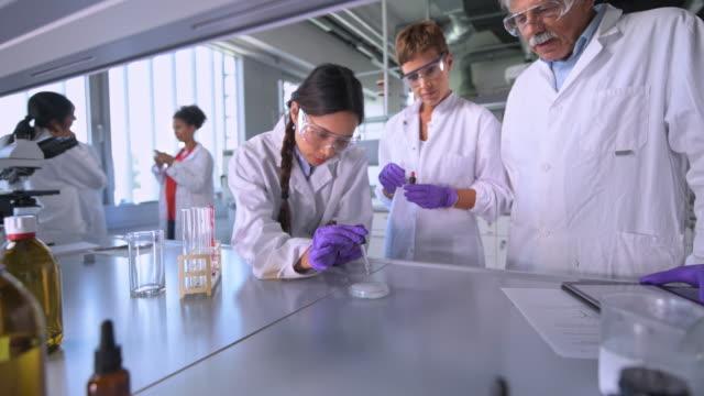 wissenschaftlerin blick auf chemische reaktion - schutzbrille stock-videos und b-roll-filmmaterial