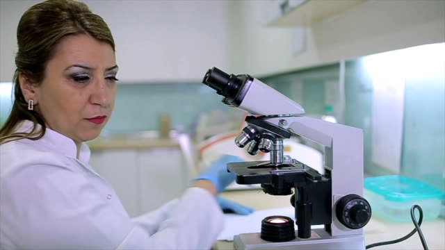 female scientist looking through a microscope in a laboratory,microbiology - forensic science stock videos & royalty-free footage