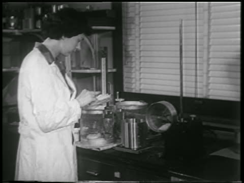 vidéos et rushes de b/w 1952 female scientist putting white mouse in cannister in lab / another mouse on wheel - 1952